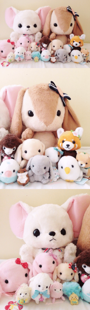 Cute, Love, and Tumblr: Mupasteluniverde mypasteluniverse:  My collection of Amuse plush so far! I won a lot of them in Japan, some are from Tofu Cute, Love Jojo and the Kawaii Kollective (^∇^)★彡
