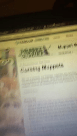 Tumblr, Blog, and Wiki: Muppsi W  Suwsiny Muppete snoopingasusualisee:The muppet wiki is one hell of a ride actually
