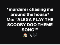 """Scooby Doo, House, and Song: *murderer chasing me  around the house*  Me: """"ALEXA PLAY THE  SCOOBY DOO THEME  SONG!"""""""