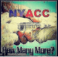 @NYCACC PLEASE STOP EUTHANIZING HEALTHY, ADOPTABLE DOGS WITHIN DAYS OF ARRIVAL!!!! NYCACCVICTIM 😫 . THERE WERE 45 DOGS KILLED💉BY NYCAC&C IN OCTOBER, 70 IN NOVEMBER AND 49 IN DEC 2016 !!!! UNACCEPTABLE, CRUEL, HEARTLESS!!!! 💔💔😭😭 NYCACC NEEDS NEW MANAGERS THAT ACTUALLY CARE AND WILL REACH OUT TO SAVE THE ANIMALS AS OPOSED TO EUTHANIZE THEM. FOREST(RIP💔🙏) A1085546 FOR EXAMPLE WAS ONLY ONE YEAR OLD AND WAS KILLED ON 8-22-16 ONLY 6 DAYS AFTER ARRIVING AT THE SHELTER. IN HIS MEMORY AND ALL THE OTHERS THAT WERE UNFAIRLY EUTHANIZED WE WILL KEEP VOICING FOR A REFORM IN THIS CRUEL AND HEARTLESS SYSTEM. . NYCACC Leadership: Executive Team Risa Weinstock, Executive Director and General Counsel MeLissa Webber, Director of Operations Phillip Reid, Chief Information Officer Ellen Curtis, Senior Manager, Programs Aurora Piacentino, Senior Manager, Operations Full list of dogs euthanized in 2016 by NYCACC TEAM at :http:-nycdogs.urgentpodr.org-gbnf-dogs-page- Gone but NOT Forgotten Gone Dogs 2017-01 (47) Gone Dogs 2016-12 (49) Gone Dogs 2016-11 (70) Gone Dogs 2016-10 (45) Gone Dogs 2016-09 (79) Gone Dogs 2016-08 (95) Gone Dogs 2016-07 (79) Gone Dogs 2016-06 (60) Gone Dogs 2016-05 (66) Gone Dogs 2016-04 (58) Gone Dogs 2016-03 (38) Gone Dogs 2016-02 (49) Gone Dogs 2016-01 (41) stopbreeding nygovernor nyc nycacc thecityneversleeps nbcnews abcnews usatoday nycmayor awareness rightchoices makeadoptionyouronlyoption stopeuthanasia righttolive animalrights puppiesforsale breeders puppymills statenisland nokillNYC 👉 nycaccvictim newengland ny deblasio billdeblasio nytimes huntingtonpost PLEASE SIGN PETITION AT @awesomezia bio requesting a reform!! 🙏 🙏 💔 . ** Please don't breed or buy when shelter dogs die! 🐕🐶🐩🙏 😢: Mure? @NYCACC PLEASE STOP EUTHANIZING HEALTHY, ADOPTABLE DOGS WITHIN DAYS OF ARRIVAL!!!! NYCACCVICTIM 😫 . THERE WERE 45 DOGS KILLED💉BY NYCAC&C IN OCTOBER, 70 IN NOVEMBER AND 49 IN DEC 2016 !!!! UNACCEPTABLE, CRUEL, HEARTLESS!!!! 💔💔😭😭 NYCACC NEEDS NEW MANAGERS THAT ACTUALLY CARE AND WILL REACH OUT TO SAVE THE ANIMALS AS OPOSED TO EUTHANIZE THEM. FOREST(RIP💔🙏) A1085546 FOR EXAMPLE WAS ONLY ONE YEAR OLD AND WAS KILLED ON 8-22-16 ONLY 6 DAYS AFTER ARRIVING AT THE SHELTER. IN HIS MEMORY AND ALL THE OTHERS THAT WERE UNFAIRLY EUTHANIZED WE WILL KEEP VOICING FOR A REFORM IN THIS CRUEL AND HEARTLESS SYSTEM. . NYCACC Leadership: Executive Team Risa Weinstock, Executive Director and General Counsel MeLissa Webber, Director of Operations Phillip Reid, Chief Information Officer Ellen Curtis, Senior Manager, Programs Aurora Piacentino, Senior Manager, Operations Full list of dogs euthanized in 2016 by NYCACC TEAM at :http:-nycdogs.urgentpodr.org-gbnf-dogs-page- Gone but NOT Forgotten Gone Dogs 2017-01 (47) Gone Dogs 2016-12 (49) Gone Dogs 2016-11 (70) Gone Dogs 2016-10 (45) Gone Dogs 2016-09 (79) Gone Dogs 2016-08 (95) Gone Dogs 2016-07 (79) Gone Dogs 2016-06 (60) Gone Dogs 2016-05 (66) Gone Dogs 2016-04 (58) Gone Dogs 2016-03 (38) Gone Dogs 2016-02 (49) Gone Dogs 2016-01 (41) stopbreeding nygovernor nyc nycacc thecityneversleeps nbcnews abcnews usatoday nycmayor awareness rightchoices makeadoptionyouronlyoption stopeuthanasia righttolive animalrights puppiesforsale breeders puppymills statenisland nokillNYC 👉 nycaccvictim newengland ny deblasio billdeblasio nytimes huntingtonpost PLEASE SIGN PETITION AT @awesomezia bio requesting a reform!! 🙏 🙏 💔 . ** Please don't breed or buy when shelter dogs die! 🐕🐶🐩🙏 😢