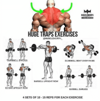 Memes, Exercise, and Rugs: MUSCLE MORPH  HUGETRAPS EXERCISES  @MUSCLE MORPH  UMBBELL  RUGS  DUMBBELL BENT OVER RAISE  BARBELL UPRIGHT ROW  EZ BAR UPRIGHT ROW  BARBELL SHRUGS  4 SETS OF 10 15 REPS FOR EACH EXERCISE Want Bigger Traps? Try this workout 💪 - Follow @bossgainz for more tips. - Via @musclemorph_