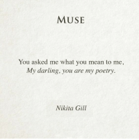 Mean, Muse, and Poetry: MUSE  You asked me what you mean to me,  My darling, you are my poetry  Nikita Gill