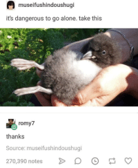 Being Alone, Source, and Notes: museifushindoushugi  it's dangerous to go alone. take this  romy  thanks  Source: museifushindoushugi  270,390 notes >D he puff