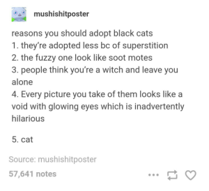 Why you should adopt black cats: mushishitposter  reasons you should adopt black cats  1. they're adopted less bc of superstition  2. the fuzzy one look like soot motes  3. people think you're a witch and leave you  alone  4. Every picture you take of them looks like a  void with glowing eyes which is inadvertently  hilarious  5. cat  Source: mushishitposter  57,641 notes Why you should adopt black cats