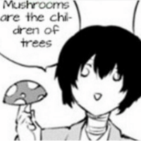 Only facts for you guys - Mell-@Animemikku: Mushrooms  are the chil-  dren of  Trees Only facts for you guys - Mell-@Animemikku