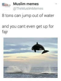 What is everyone's game plan for Ramadan this year? Hopefully not like this meme 😂 🤣: Muslim memes  MM  @The MuslimMemes  8 tons can jump out of water  and you cant even get up for  fajr What is everyone's game plan for Ramadan this year? Hopefully not like this meme 😂 🤣