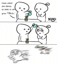 Memes, Water, and 🤖: Must water  the plants  so that it can  grow TALL  L o  SCAG  レ Yes! Water your plant!! 🌻🌻 art comic lilgags