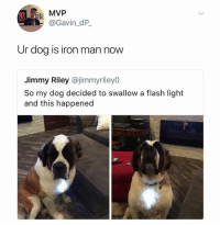 flash light: MVP  @Gavin_dP  Ur dog is iron man now  Jimmy Riley @jimmyrileyO  So my dog decided to swallow a flash light  and this happened