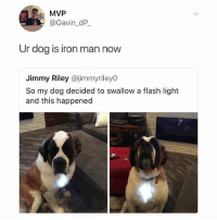 The new Tony Stark!: MVP  @Gavin_dP  Ur dog is iron man now  Jimmy Riley @jimmyriley0  So my dog decided to swallow a flash light  and this happened The new Tony Stark!