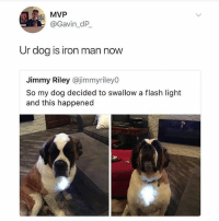 Don't worry, Ironman is fine.: MVP  @Gavin_dP  Ur dog is iron man now  Jimmy Riley @jimmyriley0  So my dog decided to swallow a flash light  and this happened Don't worry, Ironman is fine.