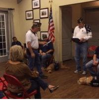 """Please take a moment to *LIKE* K9 For Warriors: https://www.facebook.com/K9sforWarriors/ Tell them """"A Place To Bark"""" sent you💕 I was Blessed to attend the graduation at """"K9 For Warriors"""" this past week. And even more Blessed to announce that """"A Place To Bark"""" will be helping to find Rescue Dog Candidates, to potentially become service dogs, for veterans suffering from PTSD, traumatic brain injury and those suffering trauma.  The goal of this lifesaving program run by K9 For Warriors is to empower these veterans to return to civilian life, with dignity and independence. A Win/Win situation that will Save Two Lives! I'm so excited about the new year ahead & new partnerships. This is just the first of several exciting announcements, I will have this month. The link below is to the graduation I attended at K9 For Warriors, if you would like to view.  #everylifematters #aplacetobark: mwrRT Please take a moment to *LIKE* K9 For Warriors: https://www.facebook.com/K9sforWarriors/ Tell them """"A Place To Bark"""" sent you💕 I was Blessed to attend the graduation at """"K9 For Warriors"""" this past week. And even more Blessed to announce that """"A Place To Bark"""" will be helping to find Rescue Dog Candidates, to potentially become service dogs, for veterans suffering from PTSD, traumatic brain injury and those suffering trauma.  The goal of this lifesaving program run by K9 For Warriors is to empower these veterans to return to civilian life, with dignity and independence. A Win/Win situation that will Save Two Lives! I'm so excited about the new year ahead & new partnerships. This is just the first of several exciting announcements, I will have this month. The link below is to the graduation I attended at K9 For Warriors, if you would like to view.  #everylifematters #aplacetobark"""