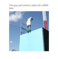 Memes, Bike, and 🤖: MX  This guy just tumed a zebra into a B  bike Follow me (@hangars) for more! 💕