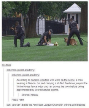 Pikachu, Pokemon, and White House: mxutsuu  According to multiple reporters who were on the scene, a man  wearing a Pikachu hat and carrying a stuffed Pokémon jumped the  White House fence today and ran across the lawn before being  apprehended by Secret Service agents.  Source: Kotaku  FREE HIM!  son, you can't battle the American League Champion without all 8 badges Straight to the Pokemon League