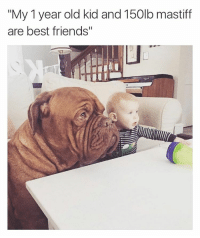 """Memes, 🤖, and Mastiff: """"My 1 year old kid and 150lb mastiff  are best friends"""" Best pals! 🐶👶🏻"""