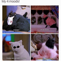 Being Alone, Dank, and Dope: My 4 moods!  FOOD  I'm so alone  Curse my sarcastic nature • Are you odd or even? Comment👇😭 Like this post and scroll 👉🏻🙌🏻 ━━━━━━━━━━━━━ ❤️ LIKE This Post! ❤️ 😋 TAG Your Friends 😋 💬 COMMENT Below! 💬 👍 FOLLOW For More! 👍 😂 DM Me Your Memes! 😂 🙏 USE BallistaAlliance 🙏 - Gamers memes meme funny tb like follow COD laugh lol girl dope joke savage dank followforfollow instagram justinbieber love yeezy ballistaalliance explorepage explore
