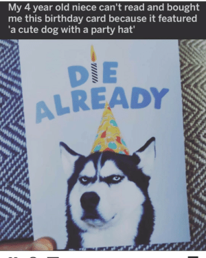 Aren't kids the best ( look at that innocence): My 4 year old niece can't read and bought  me this birthday card because it featured  'a cute dog with a party hat'  DIE  ALREADY Aren't kids the best ( look at that innocence)