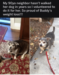 Fat: My 90yo neighbor hasn't walked  her dog in years so I volunteered to  do it for her. So proud of Buddy's  weight loss!!! Fat