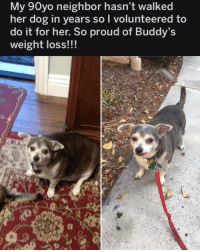 Memes, Proud, and 🤖: My 90yo neighbor hasn't walked  her dog in years sol volunteered to  do it for her. So proud of Buddy  weight loss!!!