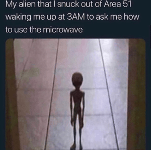 snuck: My alien that I snuck out of Area 51  waking me up at 3AM to ask me how  to use the microwave