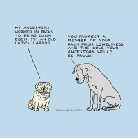 """Good, Cold, and Old: MY ANCESTORS  WORKED IN PACKS  TO BRING DOWN  8ISON. I'M AN OLD  LADY'S LAPDOG  MEMBER OF YOUR  PACK FROM LONELINEsS  AND THE COLD. YOUR  ANCESTORS WOULD  J)  @DRAWINGSorDOGS <p>Good boys via /r/wholesomememes <a href=""""https://ift.tt/2r8Jv8h"""">https://ift.tt/2r8Jv8h</a></p>"""