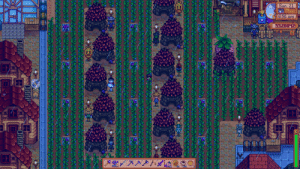 My Ancient Fruit farm during rainy day. It's super glorious when the Juminos come out and harvest O_o/: My Ancient Fruit farm during rainy day. It's super glorious when the Juminos come out and harvest O_o/
