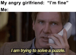 """More of the best memes at http://mountainmemes.tumblr.com: My angry girlfriend: """"I'm fine""""  Me:  I am trying to solve a puzzle. More of the best memes at http://mountainmemes.tumblr.com"""