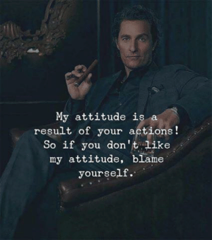 Blame Yourself: My attitude is a  result of your actions!  So if you don't like  my attitude, blame  yourself.