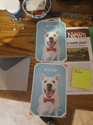 My aunts mailed me the same card for my birthday! I may be one of a kind, but these cards sure aren't.: My aunts mailed me the same card for my birthday! I may be one of a kind, but these cards sure aren't.