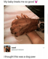 Definitely, Memes, and Good: My baby treats me so good  saad  @SAADTHESAV  i thought this was a dog paw She's definitely a furry via /r/memes https://ift.tt/2PuSw6d