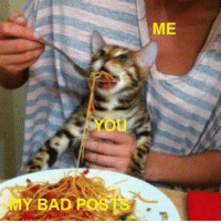 My Bad Meme: MY BAD POSTS  ME