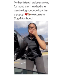 I GOTCHU A DOG YOU GOT ME A DOG I GOTCHU A DOG YOU GOT ME A DOG this dialogue alone was the best via: @_itsraven: My bestfriend has been crying  for months on how bad she  want a dog sooooo0 lgot her  a puppy! welcome to  Dog-Momhood I GOTCHU A DOG YOU GOT ME A DOG I GOTCHU A DOG YOU GOT ME A DOG this dialogue alone was the best via: @_itsraven