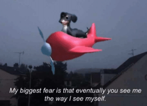 My Biggest Fear: My biggest fear is that eventually you see me  the way I see myself