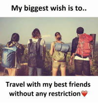 Be Like, Friends, and Meme: My biggest wish is to..  Travel with my best friends  without any restriction Twitter: BLB247 Snapchat : BELIKEBRO.COM belikebro sarcasm meme Follow @be.like.bro