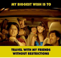 Memes, Travel, and 🤖: MY BIGGEST WISH IS TO  TRAVEL WITH MY FRIENDS  WITHOUT RESTRICTIONS