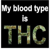 Bloods, Memes, and 🤖: My blood type  IS