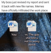 Lmao this is workplace goals: My boss just revised my report and sent  it back with new file names. Memes  have officially infiltrated the work place.  @Mas Popa  vs. The guy  You  she told u  not to worry  about Lmao this is workplace goals