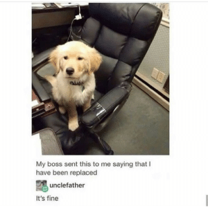 Good, Been, and Boss: My boss sent this to me saying that I  have been replaced  unclefather  It's fine They were fired but for a good cause via /r/wholesomememes https://ift.tt/32AkFAl