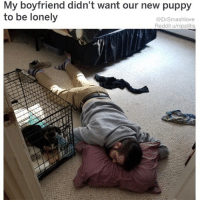 "Bless Up, Memes, and Pop: My boyfriend didn't want our new puppy  to be lonely  @DrSmashlove  Reddit u/nipplitis MEN DON'T DO THIS. THIS A LIL 'too' RESPONSIBLE. LET HER SEE YA TRUE COLORS LIKE THIS AND SHE GON HECK AROUND AND HAVE U DOING THIS FOR 18 YEARS. WITH A LIL HUMAN. WHO HATE U WHEN HIS SNOTTY LIL A$$ TURN 12. HAVE U LIKE ""WOW, THIS IS WHAT I GET FOR BEING A HELLA GOOD HUMAN TO MY PUPPY"" EXACTLY! AND IT WORK BOTH WAYS! IF THE NANI ON POINT HER BC PILLS GETTING POPPED DIRECTLY INTO THE TOILET AND FLUSHED. SNAP CRACKLE POP BIH. ""What chu mean u take the pill every day at 6 pm and now u can't find them? Oh they missing? Oh word? U don't say 🐸☕️"". YALL BE SAFE OUT THERE BLESS UP 🤗❤️😍😂"