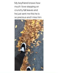 this is so cute i'm crying via: twitter- Elviesinclair: My boyfriend knows how  much l love stepping on  crunchy fall leaves and  he just sent me this he is  so precious and I miss him this is so cute i'm crying via: twitter- Elviesinclair