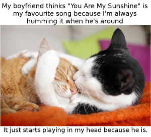 "How do you end a relationship that neither of you want to end? by actually_crazy_irl MORE MEMES: My boyfriend thinks ""You Are My Sunshine"" is  my favourite song because I'm always  humming it when he's around  It just starts playing in my head because he is. How do you end a relationship that neither of you want to end? by actually_crazy_irl MORE MEMES"