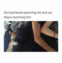 how I want my future to be:: My boyfriends spooning me and our  dog is spooning him how I want my future to be: