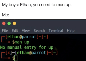 Help, Search, and Programmer Humor: My boys: Ethan, you need to man up.  Me:  File Edit View Search Terminal Help  [ethan@pa r rot ] -[-]  $man up  No manual ent ry for up  -[x]-[ethan@pa r rot ]- [~]  $1 Man up