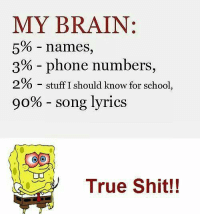 song: MY BRAIN:  5% names,  3% phone numbers,  2% stuff I should know for school  go% song lyrics  OO  True Shit!!