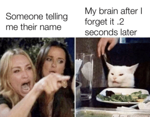 Brain, Name, and Just: My brain after I  forget it .2  seconds later  Someone telling  me their name I just forgot it