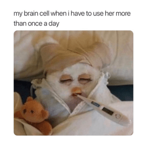 Brain, Her, and Once: my brain cell when i have to use her more  than once a day Poor thing 😅