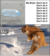 Memes, Saw, and Brain: My Brain: Don't do it  Don't do it  Don't do it  Don't do it  Don't do it  Don't do it  Don't do it  Don't do it  l Saw an empty bottle  on the road  Mea  OTrollFootball