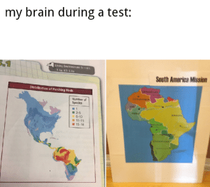 Happy friday the 13th. Wait... Oh no: my brain during a test:  S-1  Living Environment St 1 K1:  1.1a; K3:3,1a  South America Mission  Distribution of Perching Birds  VENEZUE  COLOMBIA  Number of  Species  DR  BRAZIL  2-5  6-10  11-15  15-36  yOLIVIA  ARGENTNA Happy friday the 13th. Wait... Oh no