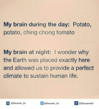Anyone else? 😂: My brain during the day: Potato,  potato, ching chong tomato  My brain at night: I wonder why  the Earth was placed exactly here  and allowed us to provide a perfect  climate to sustain human life.  If @Sarcastic US  @sarcastic Us  @Sarcasmlol Anyone else? 😂
