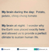 Human, Tomato, and Humanism: My brain during the day: Potato,  potato, ching chong tomato  My brain at night: I wonder why  the Earth was placed exactly here  and allowed us to provide a perfect  climate to sustain human life.  Sarcasmlol.com  MS v @Sarcastic Us  If @Sarcasmlol