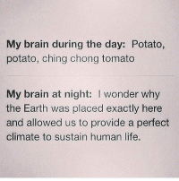 Memes, 🤖, and Human: My brain during the day: Potato,  potato, ching chong tomato  My brain at night: l wonder why  the Earth was placed exactly here  and allowed us to provide a perfect  climate to sustain human life. Every. Single. Day. 🙄